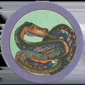 TA Ticcer 122-Snake.