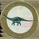 The Dinosaur Collection 6-3-saltasaurus.