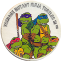 Tortues Ninja 140-Teenage-Mutant-Ninja-Turtles-III.