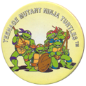 Tortues Ninja 141-Teenage-Mutant-Ninja-Turtles.