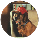 VR Troopers Jeb-the-dog-wearing-a-hat.