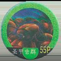 Yu-Gi-Oh! 55P-圣甲虫群.