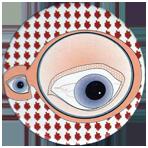 Zigs 083-Eye-eye.