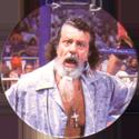 Panini Caps > World Wrestling Federation (WWF) 08.