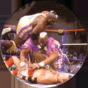 Panini Caps > World Wrestling Federation (WWF) 10.