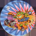 Pro Caps > Garfield 47.