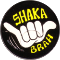 Rohks > Ice Age 012-Shaka-Brah.