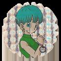 Spiners > Dragonball Z > 1-30 12-Bulma.