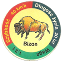 Star Foods > Animals Bizon.