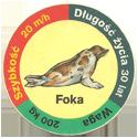Star Foods > Animals Foka.