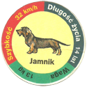 Star Foods > Animals Jamnik.