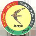 Star Foods > Animals Jerzyk.