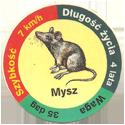 Star Foods > Animals Mysz.