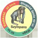 Star Foods > Animals Szympans.