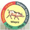 Star Foods > Animals Wieprz.