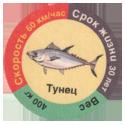 Star Foods > Animals Тунец.