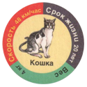 Star Foods > Animals кошка.