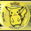 Taso > Pokémon 10-#25-Pikachu.