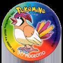Taso > Taso 4 Pokémone 017-Pidgeotto.