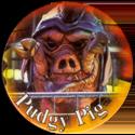 Universal Flip-Caps Association > Power Rangers 024-Pudgy-Pig.