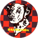 Unknown > Block writing Dalmation.