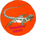 Unknown > Block writing Dragon-Newt.