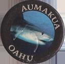 Unknown > Hawaiian Islands Oahu-Aumakua.