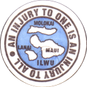 Unknown > Hawaiian An-Injury-To-One-Is-An-Injury-To-All-Molokai-Lanai-Maui.