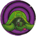 Unknown > Roundy backgrounds Turtle.