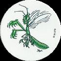 Wackers! > Splatter Bugs B 13B.