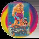 World Flip Federation > Street Fighter II 454-Sagat-(silver).