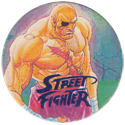 World Flip Federation > Street Fighter II 493-Sagat-(blue).