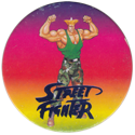 World Flip Federation > Street Fighter II 556-Guile-(blue).