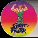 World Flip Federation > Street Fighter II 556-Guile-(blue).