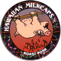 Worlds Of Fun Hawaiian Milkcaps > Hawaiian Food Roast-Pork.