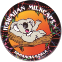 Worlds Of Fun Hawaiian Milkcaps > Kamaaina Koala Yawning.