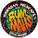 Worlds Of Fun Hawaiian Milkcaps > Local Slangs Bummahs.