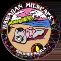 Worlds Of Fun Hawaiian Milkcaps > Malihine Koala Sunbathing.