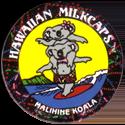 Worlds Of Fun Hawaiian Milkcaps > Malihine Koala Surfing.