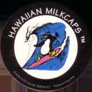 Worlds Of Fun Hawaiian Milkcaps > Surfing Penguin Surfing_Penguin_2.