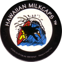 Worlds Of Fun Hawaiian Milkcaps > Surfing Penguin Surfing_Penguin_4.