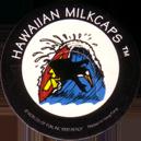 Worlds Of Fun Hawaiian Milkcaps > Surfing Penguin Surfing_Penguin_4.