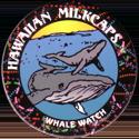 Worlds Of Fun Hawaiian Milkcaps > Whale Watch 01.