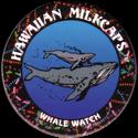 Worlds Of Fun Hawaiian Milkcaps > Whale Watch 02.