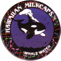 Worlds Of Fun Hawaiian Milkcaps > Whale Watch 04.