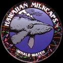 Worlds Of Fun Hawaiian Milkcaps > Whale Watch 09.