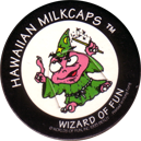 Worlds Of Fun Hawaiian Milkcaps > Wizard Of Fun Wizard_of_Fun_4.