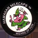 Worlds Of Fun Hawaiian Milkcaps > Wizard Of Fun Wizard_of_Fun_4.