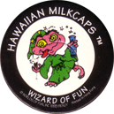 Worlds Of Fun Hawaiian Milkcaps > Wizard Of Fun Wizard_of_Fun_5.