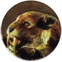 World POG Federation (WPF) > Avimage > Power Rangers 66-Sabretooth-Tiger-(Gold).